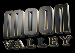 Logo MOON VALLEY GmbH